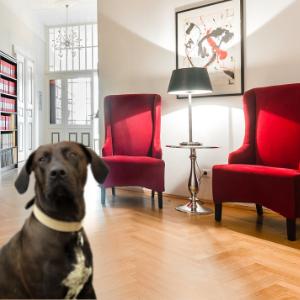Barney Bürohund